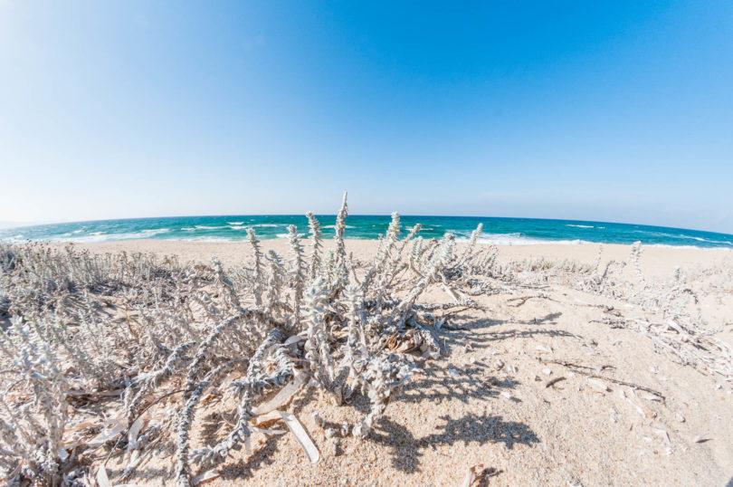 Spiaggia Poltu Biancu Badesi Olbia-Tempio